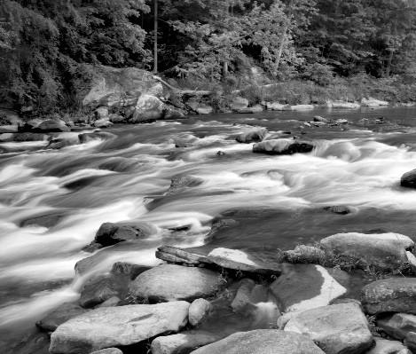 Double Trouble Shoals, downstream from King's Bend. They look benign enough here, but add a little more water and approach them tossing and turning in a kayak and the name will suddenly seem quite appropriate. From Headwaters: A Journey on Alabama Rivers.