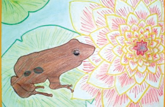 'Lilly Frog' by Carissa Barrios