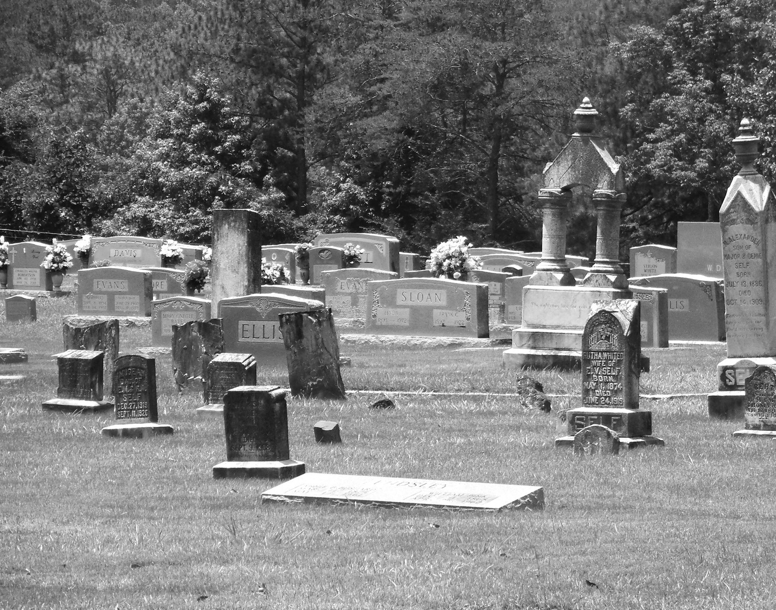 In hopes of preserving Dailey's Chapel Cemetery in Rosa, Harold Cleveland and those on the cemetery board, are asking the community to help in funding a marker to be placed on Ala 231. 'It's a large cemetery that is part of the Alabama Historic Cemetery Register and where people are still being buried,' Cleveland says. The board needs donations of any amount to help in the fundraiser with the marker costing approximately $2,000. Dailey's Chapel Cemetery dates back to 1850, but it had been a cemetery prior to that date, according to Cleveland. To donate, drop off a check to the Blount County Memorial Museum at 204 2nd Street North in Oneonta, or call museum curator Amy Rhudy for more information at 625-6905. Cemetery board members include Cleveland, Phillip Whited, Mariah Wood, Jane Chaviers, Julia Whisenant, and Gene Whited. –Nicole Singleton