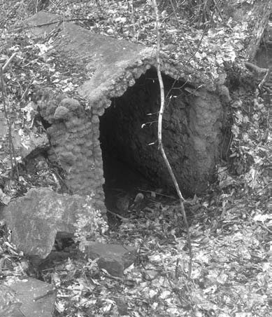 Mystery 'stone doghouse' structure located just down the hollow from Blountsville Spring; if you can identify it, call David McAlpin at 363-0440 and tell him what it is.