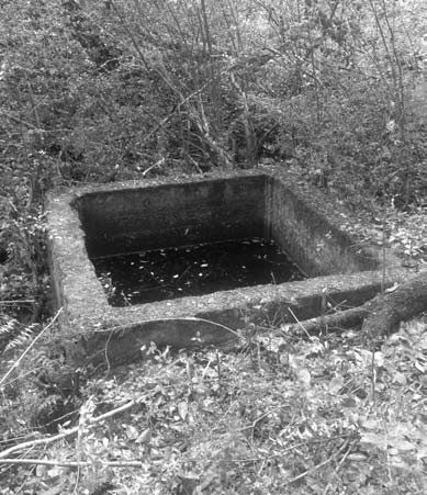 Old Blountsville Spring, located about a quarter mile south of City Hall; source of the town's water during a period of the 1800s.