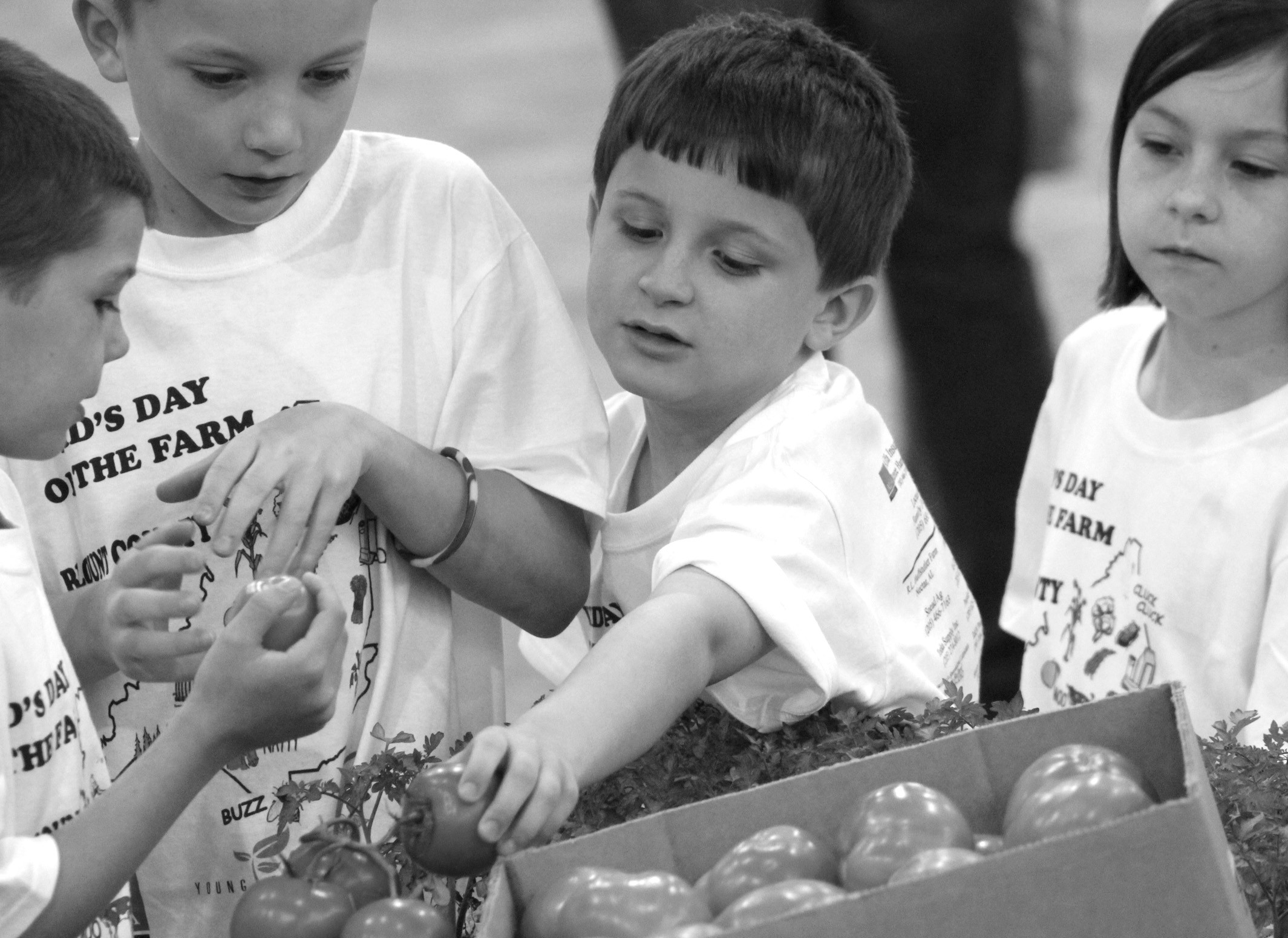 Hayden Primary School second graders, from left to right, Jordan Houston, Reese Stewart, Hayden Posten, and Ivory Chaviers check out the produce during Kids Day on the Farm last week at the Blount County-Oneonta Agri-Business Center. Students throughout the county were invited to the event to learn about livestock, sheep shearing, honeybees, farming equipment, soil, and many other farm-related topics. Kids Day on the Farm was sponsored by the Blount County Young Farmers, Women's Leadership Committee, the Farmers Federation, along with county ag teachers, the FFA, and the FCCLA. – Nicole Singleton